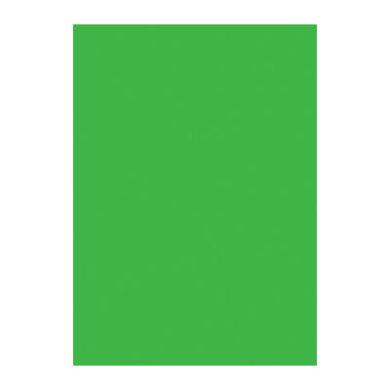 Image of bobike Sitzpolster Maxi Classic All green - grün
