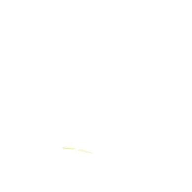 Roller - Globber Scooter Primo Foldable, grün - Onlineshop