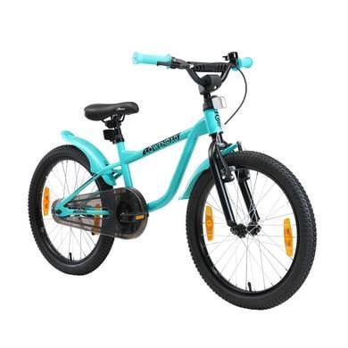 Kinderfahrrad - LÖWENRAD Kinder Fahrrad 20 Zoll Räder Mint - Onlineshop