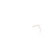 XTREM Toys and Sports - Pop Up Kollektion - Haus